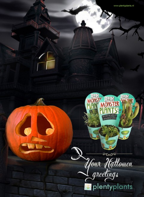 halloweenscaredpumpkin2b